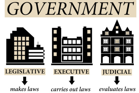 Illustration showing the three branches of government and their definitions